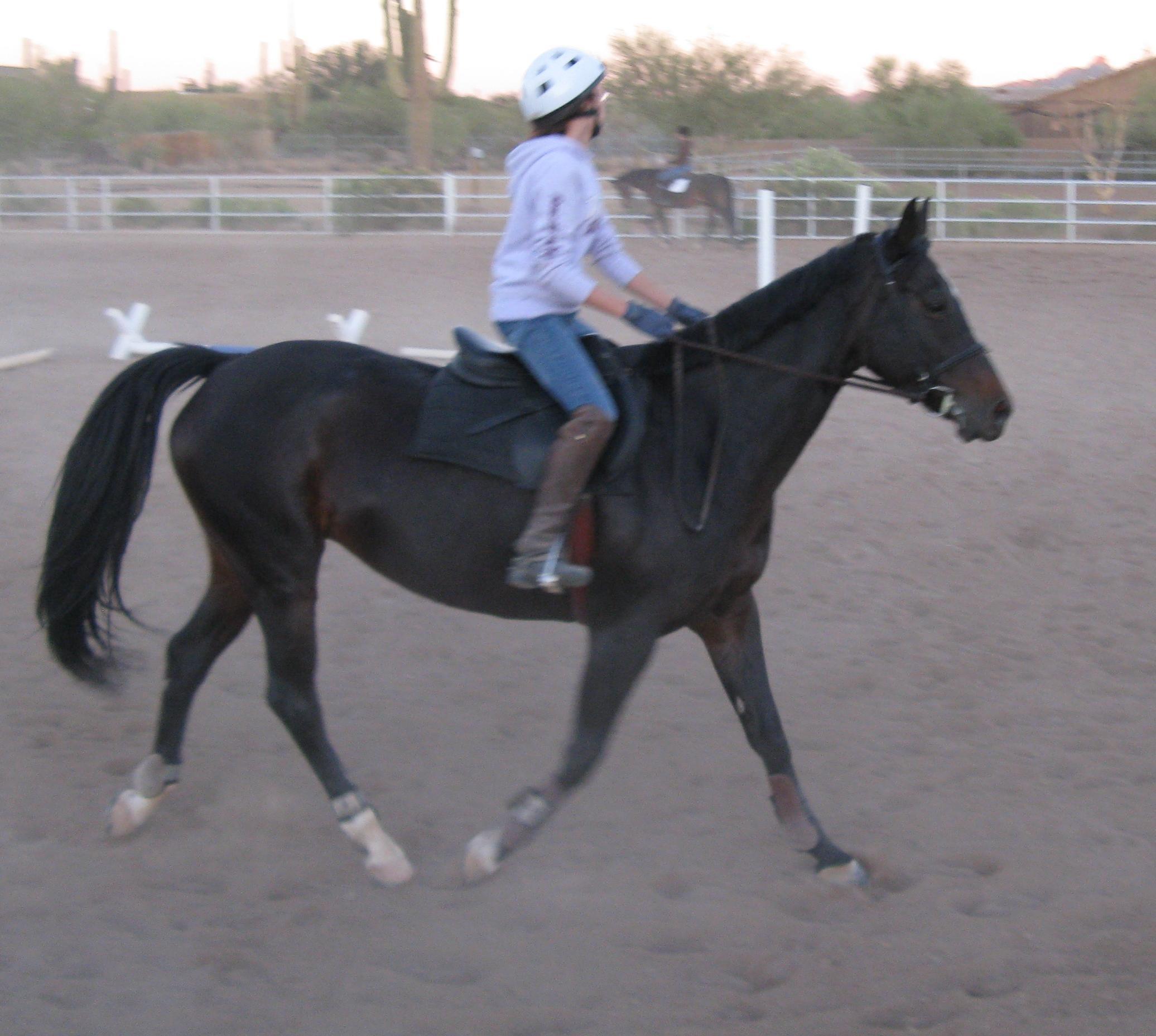 around-the-barn-november-2008-009b-jpg